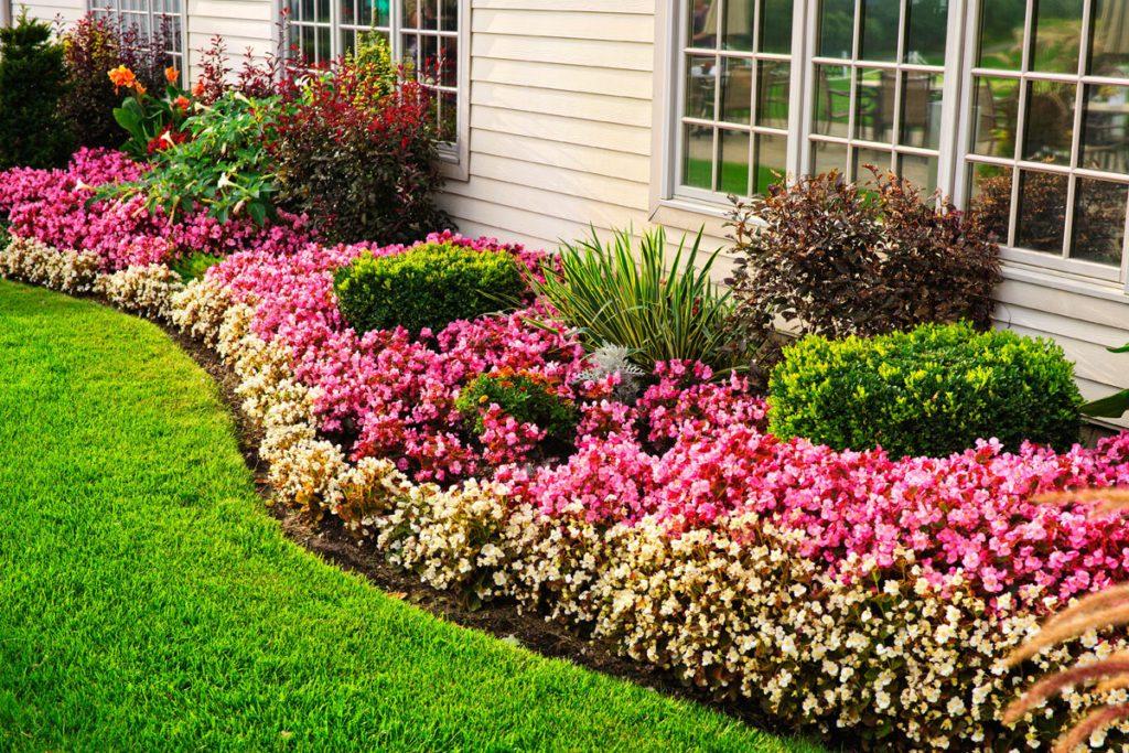 5 ไอเดียจัดสวน ต้นไม้แต่งบ้าน สวยได้ด้วยตัวเอง