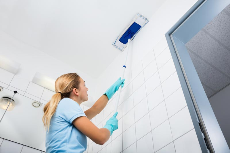 ทำอย่างไรไม่ให้มีแมงมุมกวนใจบนเพดานบ้าน